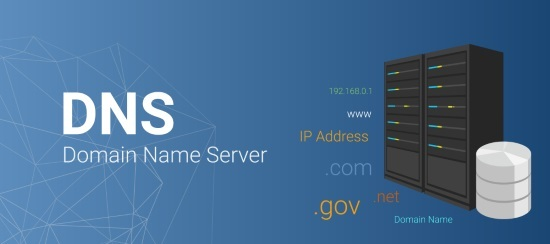 Reverse domain name system lookup
